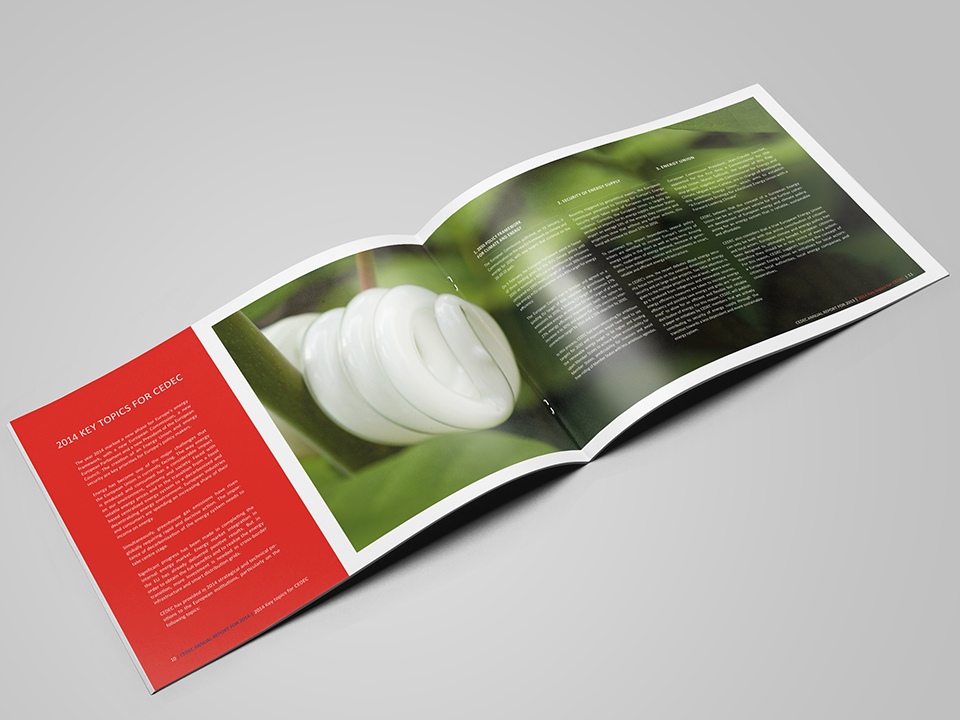 CEDEC_annual report 2014_spread2